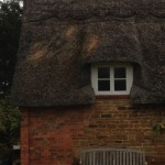 Old Thatched Roof Repairs