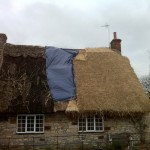 Thatched Roof Re-Thatch