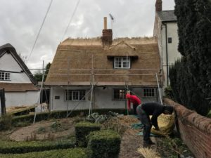 Re-Thatch Clipston