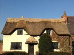 thatched-roof-re-ridge