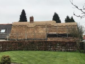 Re-Thatch-Packington-During