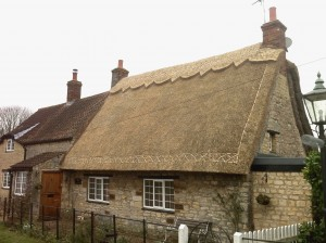 Thatched Roof Insurance Surveys