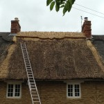 Thatched Roof Repairs